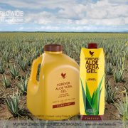 Forever-Living-Products-Kanister-versus-Tetra-Pak