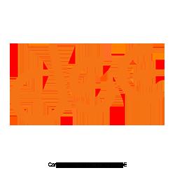 DSE-Direkt-Service-Energie-GmbH-Deutschland-Direktvertrieb