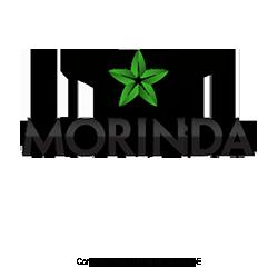 Morinda-USA-MLM-Network-Marketing