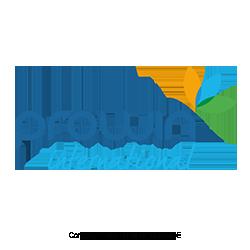 ProWIN-MLM-Network-Marketing