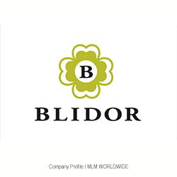 Blidor-AG-Schweiz--Direktvertrieb