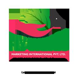 Fly-Wings-Marketing-International-India-MLM-Network-Marketing