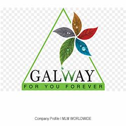Glaze-Trading-Galway-India-MLM-Network-Marketing