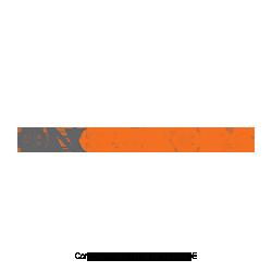 QN-Europe-MLM-Network-Marketing